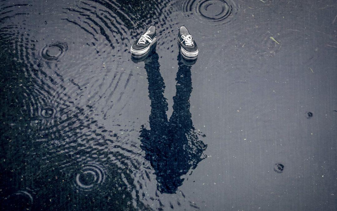 Kunnen de dijken sneller stijgen dan de zeespiegel?